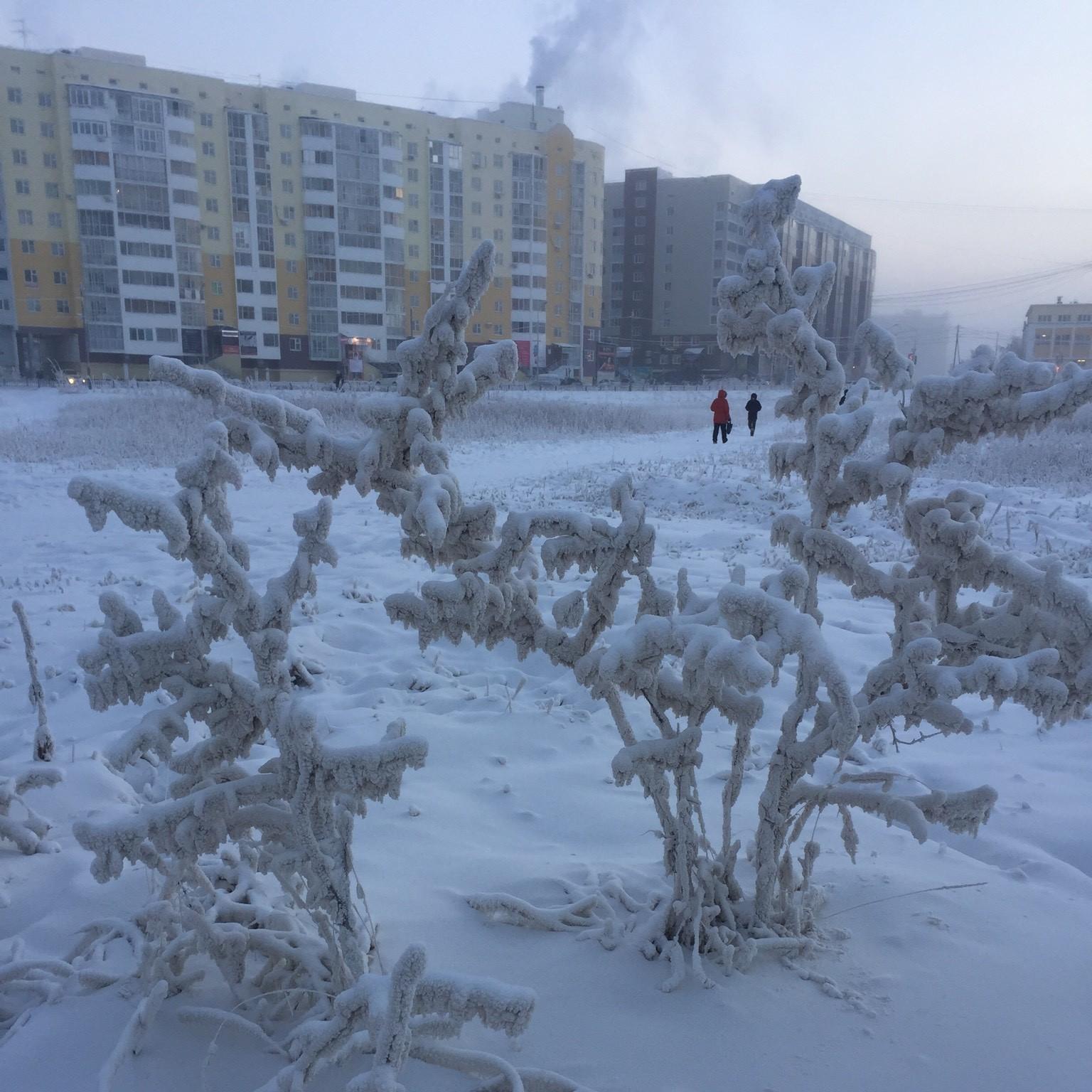 Финалисты конкурса посетят Якутск
